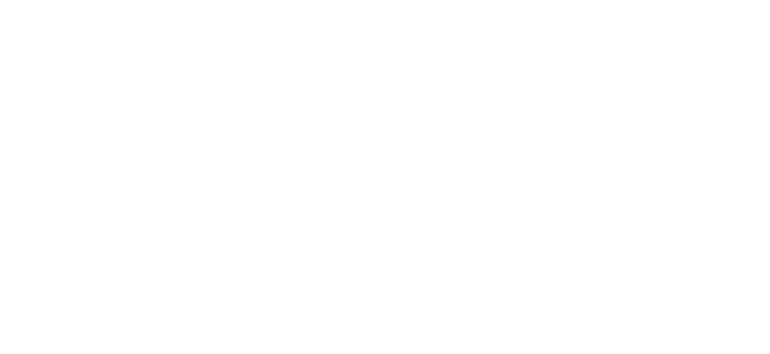 Veterinary Referral and Critical Care