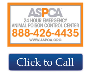 Call Animal Poison Control